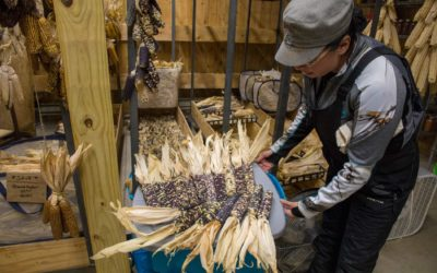"Angie Ferguson: ""Onondaga Nation & Food Sovereignty"""
